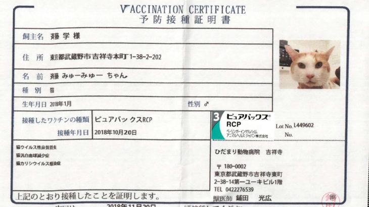 みゅーみゅーちゃん、ワクチンを打つ