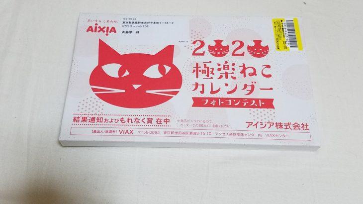 愛猫フォトコンテストの結果